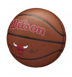 Ballon Wilson Team Alliance Chicago Bulls